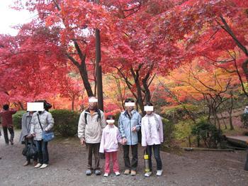 Y公園紅葉.JPG